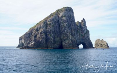 Bay Of Islands – Discover New Zealand