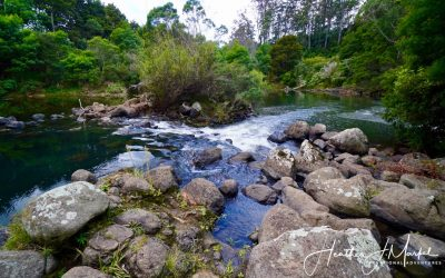 A Fond Farewell To Kerikeri, New Zealand