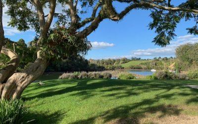 Nomadic Limbo. Reminiscing in Kerikeri New Zealand